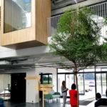 projekt strefy wejsciowej w budynku